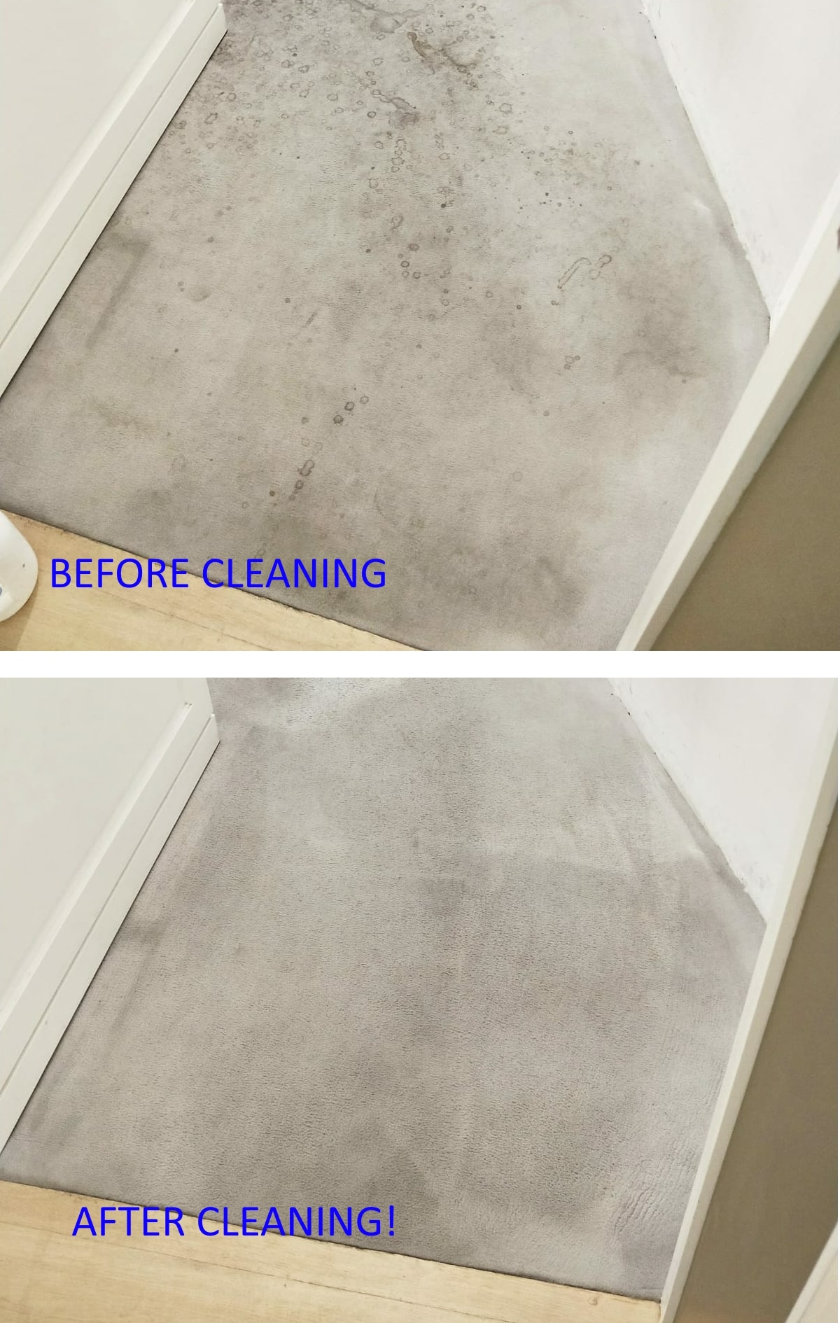 Carpet Bubbles And Wrinkles Andrews Carpet Cleaning